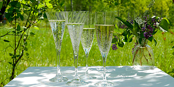 Bästa Prosecco & mousserande viner i sommar