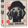 Bästa bag in box 2018: Smart Dog. Vinbetygets topplista